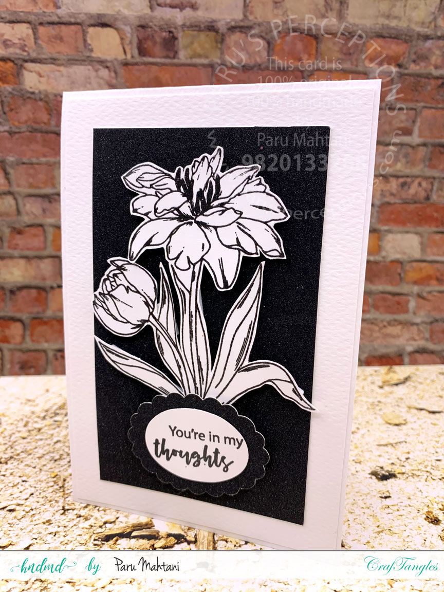 3 quick cards using 1 new stamp set! 1