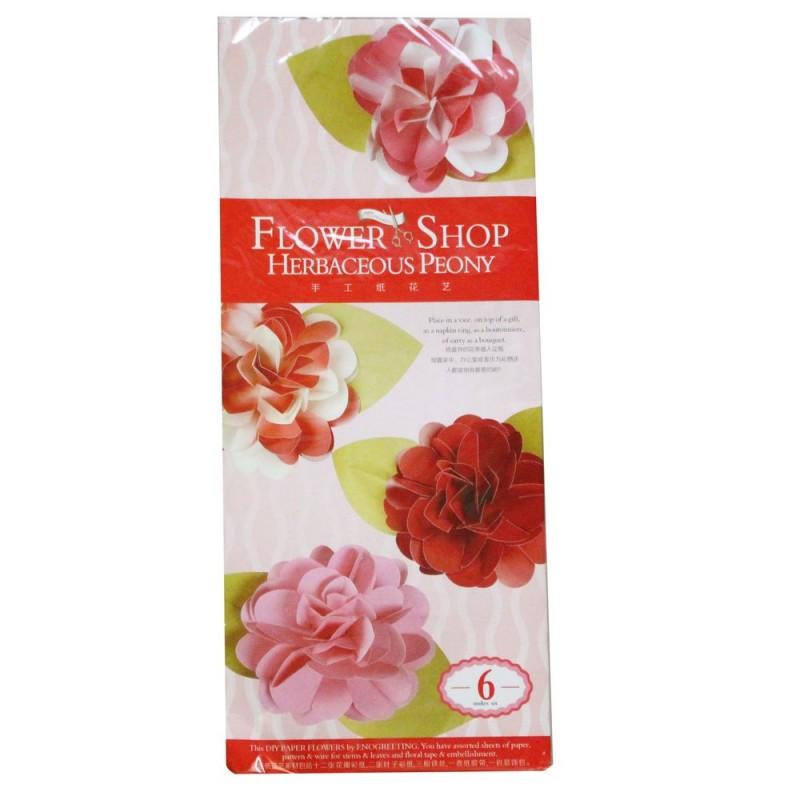 Buy diy paper flower making kit by enogreeting herbaceous peony diy paper flower making kit by enogreeting herbaceous peony mightylinksfo
