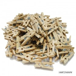 Mini Wooden Clips (100 pcs)