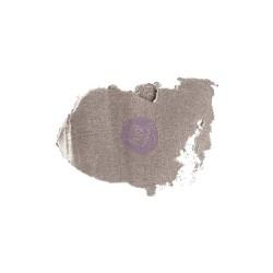 Prima Art Alchemy Antique Brilliance Wax .68 Fluid Ounce - Brushed Iron (By Finnabair)