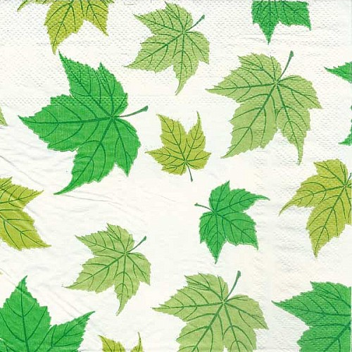 A pack of 12 by 12 inch Decoupage Napkins(5 pcs)  - Maple Leaves