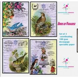 Nakshathra Designz Decoupage paper - Birds of Paradise