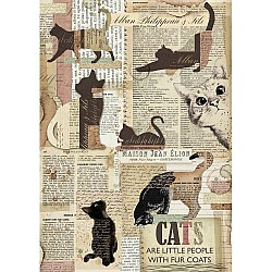 Stamperia Rice Paper A4 - Packed Cats