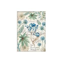 Stamperia Rice Paper A4 - Blue Tulips