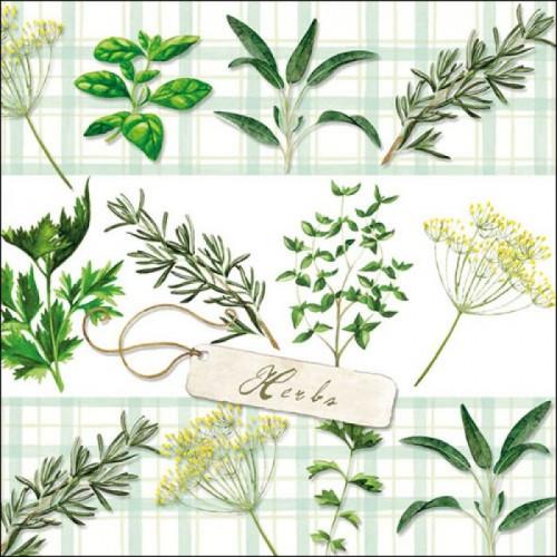 German Decoupage Napkins (5 pcs)  - Herbs