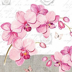A pack of 12 by 12 inch German Decoupage Napkins (5 pcs)  - Orchids with Love