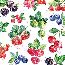 A pack of 12 by 12 inch German Decoupage Napkins (5 pcs)  - Mixed Fruit