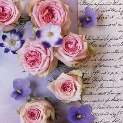 German Decoupage Napkins (5 pcs)  - Roses and Violets