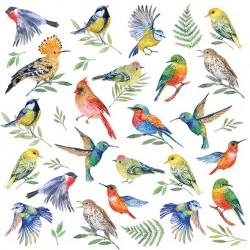 German Decoupage Napkins (5 pcs)  - Birds