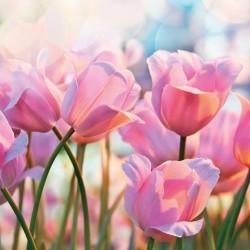German Decoupage Napkins (5 pcs)  - Pink Tulips