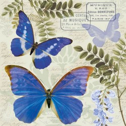 German Decoupage Napkins (5 pcs)  - Blue Morpho