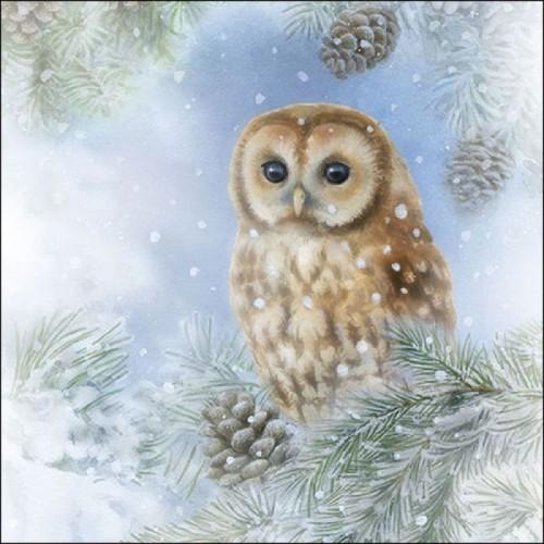 German Decoupage Napkins (5 pcs)  - Tawny Owl
