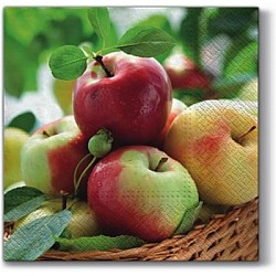 A pack of 12 by 12 inch Decoupage Napkins(5 pcs)  - Apples