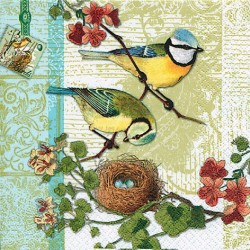 A pack of 12 by 12 inch Decoupage Napkins ( 5 pcs )  - Birds Family
