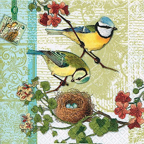 A pack of 12 by 12 inch German Decoupage Napkins ( 5 pcs )  - Birds Family
