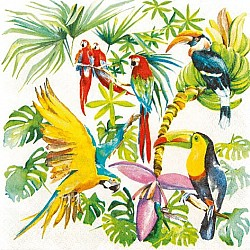 A pack of 12 by 12 inch German Decoupage Napkins ( 5 pcs )  - Birds of Paradise