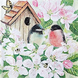 A pack of 12 by 12 inch Decoupage Napkins ( 5 pcs )  - Birds and Blossoms