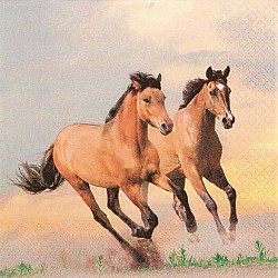 A pack of 12 by 12 inch German Decoupage Napkins ( 5 pcs )  - Wild Horses