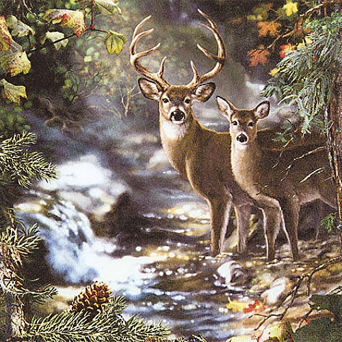 A pack of 12 by 12 inch German Decoupage Napkins ( 5 pcs )  - Deers on Creek