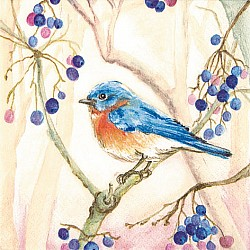 A pack of 12 by 12 inch Decoupage Napkins ( 5 pcs )  - Bird on a Tree