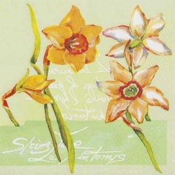 A pack of 12 by 12 inch German Decoupage Napkins ( 5 pcs )  - Daffodils in Spring