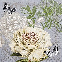 A pack of 12 by 12 inch German Decoupage Napkins ( 5 pcs )  - Vintage Peony