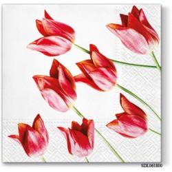 A pack of 13 by 13 inch Decpoupage Napkin Paper (SDL061800) - Set of 5 pcs
