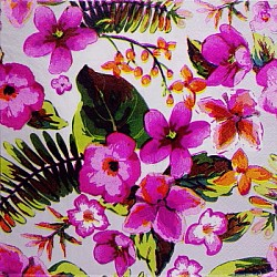 A pack of 12 by 12 inch Decoupage Napkins(5 pcs) (TISSUEP27)