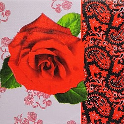 A pack of 12 by 12 inch Decoupage Napkins(5 pcs) (TISSUEP29)