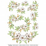 CrafTangles A4 Transfer It Sheets - Spring Flowers 9
