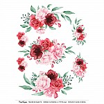 CrafTangles A4 Transfer It Sheets - Spring Flowers 11
