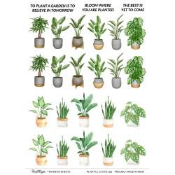 CrafTangles A4 Transfer It Sheets - Plants 1
