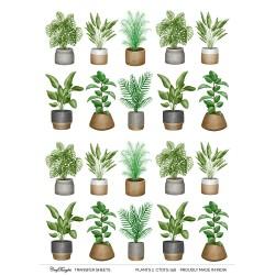 CrafTangles A4 Transfer It Sheets - Plants 2