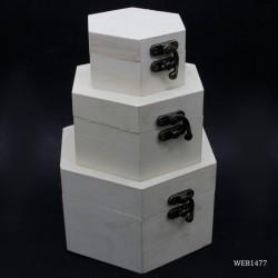 Hexagon Wooden Boxes (Set of 3)
