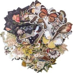 Tim Holtz Idealogy Ephemera Pack - Botanical (83/pkg)
