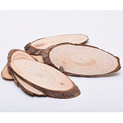 Natural Oval Wooden Slice (11 by 4 inch)