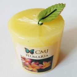 Aromatic Pillar Candles - Plumaria (Small)