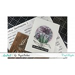 CrafTangles Sentiment Sheets  - Birthday Sentiments 1 (2 sheets of A4)