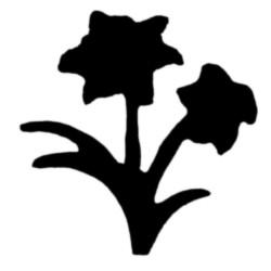 Jef Craft Punch - flowery Plant