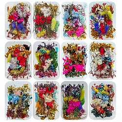 A box of Dried Flowers
