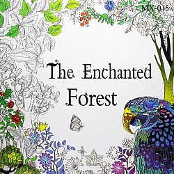 Adult colouring Book - The Enchanted Forest