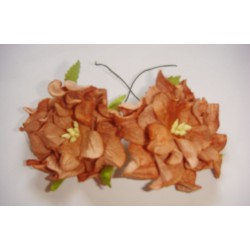Curled Flowers (Large)  - Dark Brown (A pack of 5 flowers)