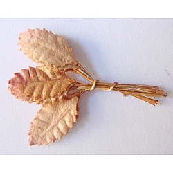 Mulberry Paper Leaves (Extra Small) - Brown (Pack of 10 leaves)