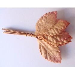 Mulberry Paper Leaves (Medium) - Brown (Pack of 10 leaves)