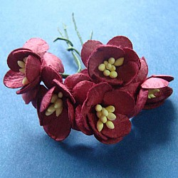 Mulberry Cherry Blossoms - Maroon (Pack of 10 flowers)