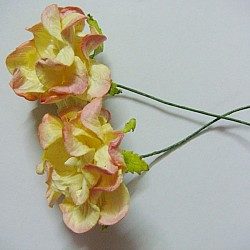 Curled Flowers (Large)  - Cream and Pink