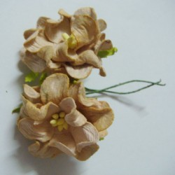 Curled Flowers (Medium)  - Light Brown (A pack of 5 flowers)