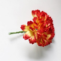 Carnation Flowers - Red and Yellow (Pack of 10 flowers)