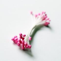Pollens - Pink