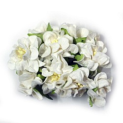 Mulberry flowers with pollens (Small) - White (Pack of 10 flowers)